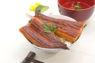 うな丼の写真素材 [FYI00796213]