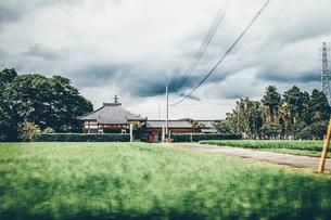 実家へ帰省。のどかな田舎道をドライブ。のんびりノスタルジックな田園風景の写真素材 [FYI00796268]