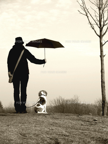 home_animalsの写真素材 [FYI00797134]