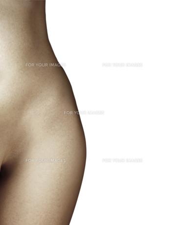 hip curvesの素材 [FYI00797162]