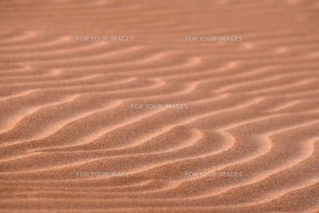 desertの写真素材 [FYI00797407]