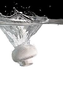 champignon in waterの写真素材 [FYI00797960]
