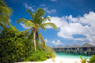 tropical beach with water bungalowsの写真素材 [FYI00798021]