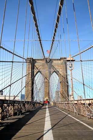 brooklyn bridge new yorkの素材 [FYI00798497]