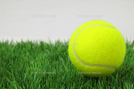 ball_sportsの写真素材 [FYI00798556]