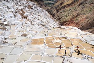 salt terracesの写真素材 [FYI00798851]