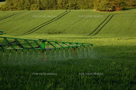 fertilizerの写真素材 [FYI00798930]