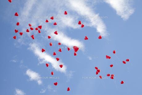 heart balloons on blue skyの写真素材 [FYI00799607]