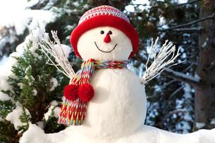 snowmanの素材 [FYI00799803]