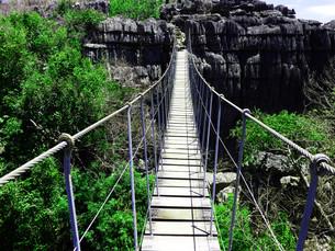 suspension bridgeの写真素材 [FYI00799808]