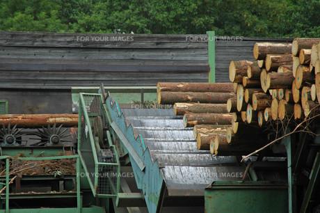 sawmillの写真素材 [FYI00799920]