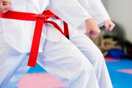 martial arts training in the gymの写真素材 [FYI00800554]