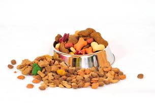dog food dry dog foodの写真素材 [FYI00800716]