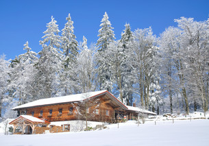 winter idyll in lamer angle at the bayerwaldの写真素材 [FYI00801691]