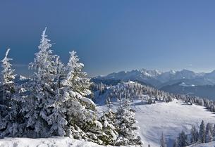 winter on dobratsch,carinthiaの写真素材 [FYI00801789]