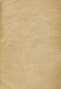 brownの写真素材 [FYI00802204]
