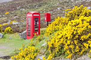 telephone boxの写真素材 [FYI00802258]