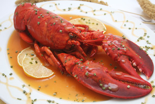 lobsterの素材 [FYI00804296]