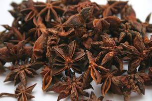 ingredients_spicesの素材 [FYI00804309]