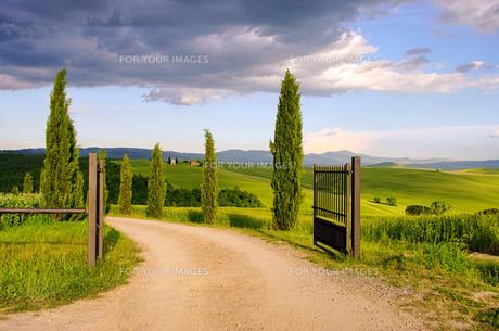 tuscany chapel - tuscany chapel 06の素材 [FYI00804491]