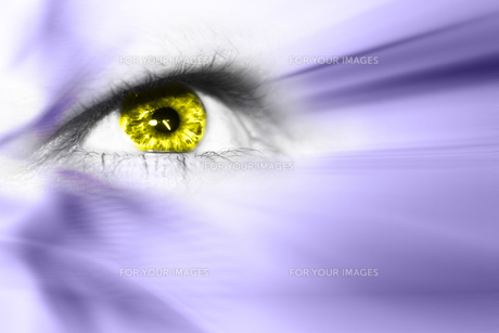 future visionの写真素材 [FYI00805086]