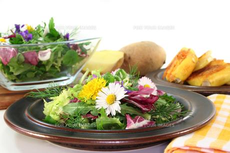 wild herbs saladの写真素材 [FYI00805473]