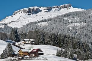 ifen winterの写真素材 [FYI00805523]