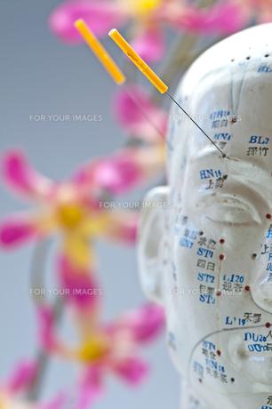 acupuncture head modelの素材 [FYI00805685]