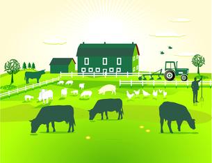 green farmの写真素材 [FYI00806141]