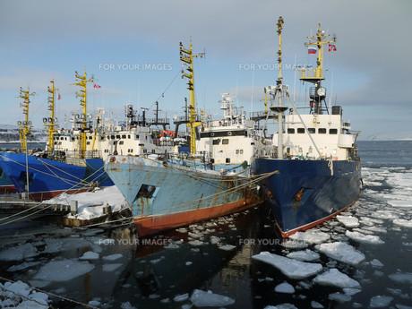 arctic fleetの素材 [FYI00806385]