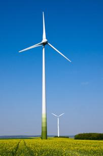 wind turbines on a field of rapeの写真素材 [FYI00806457]
