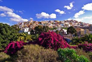 gran canaria viewsの写真素材 [FYI00806550]
