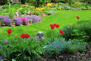 in the gardenの写真素材 [FYI00806552]