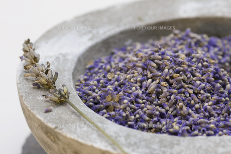 wellness care products with lavender seedsの写真素材 [FYI00806928]