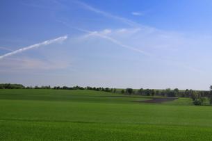 irrigationの写真素材 [FYI00806940]