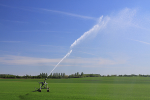 agricultural irrigationの写真素材 [FYI00806953]