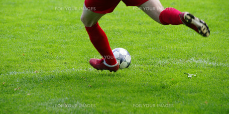legsの写真素材 [FYI00807201]