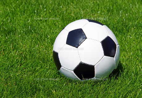 football - soccerの写真素材 [FYI00807319]