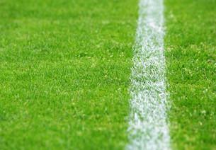 football turf sidelines rightの写真素材 [FYI00807342]