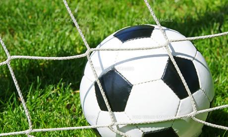 soccer goal / soccer goalの写真素材 [FYI00807346]