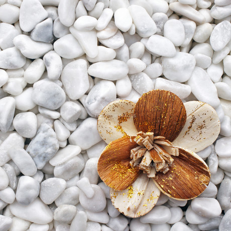 wooden flower on white stones - wellness conceptの写真素材 [FYI00807368]