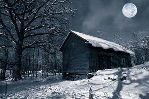winterの写真素材 [FYI00807456]