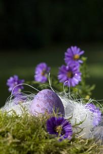 easter eggsの写真素材 [FYI00807675]