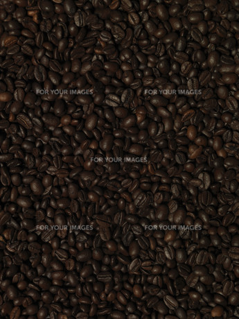 beveragesの素材 [FYI00807899]