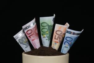 money_financesの素材 [FYI00808441]