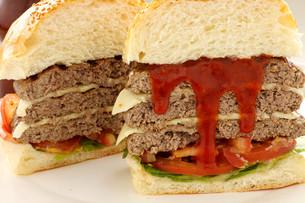 hamburgerの素材 [FYI00808564]