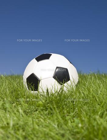 ball_sportsの写真素材 [FYI00808828]