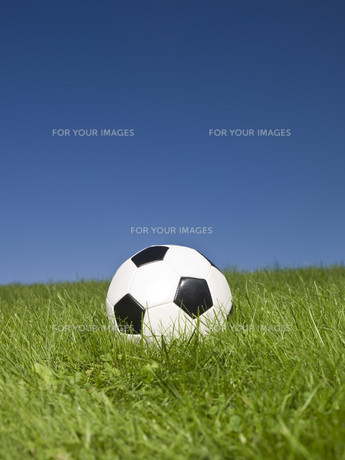 ball_sportsの写真素材 [FYI00808869]