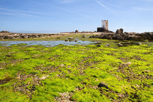 seymour tower before the channel island of jersey,ukの写真素材 [FYI00809288]