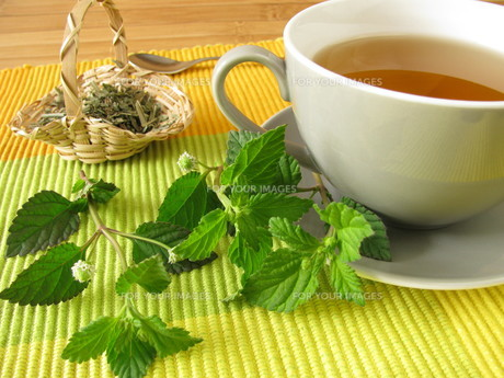 aztec sweet herb teaの写真素材 [FYI00810005]